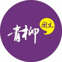 郑州市金水区青柳图文设计室