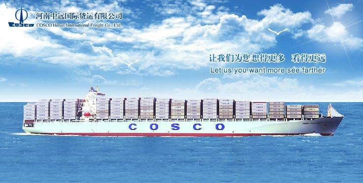 河南中远国际货运有限公司(简称河南中货)成立于1996年,是中国远洋运输(集团)公司下属的国际货运代理和综合物流型企业,是中远集装箱运输有限公司(简称中远集运)和青岛中远国际货运有限公司设在河南地区的分公司,统一负责中远集运在河南及其周边区域的各项业务。公司本部设于郑州,并在洛阳、南阳、焦作、平顶山设分支机构。 河南中货是河南地区规模最大、实力最强的内陆一级货代公司,是河南省货代协会副会长单位。多年来,公司以雄居世界前列、航线遍布全球的180余艘现代化集装箱船船队和覆盖全世界的中远服务网络为依托,为海内外